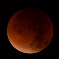 Super Luna Eclipsada.jpg